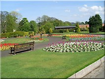 NS3975 : Flower gardens in Levengrove Park by Stephen Sweeney