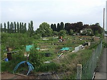 SO8453 : Allotments on Bromwich Road by John M