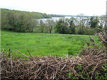 G8506 : Bay on the north side of Lough Key by Oliver Dixon