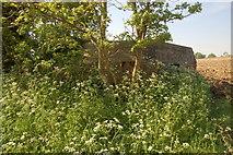 SU2763 : WW2 pillbox hiding in the hedgerow near Great Bedwyn by Roger Davies