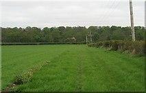 NT5682 : John Muir Way, Balgone by Richard Webb