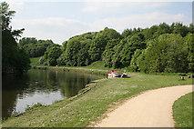 SJ6575 : Anderton Nature Park - riverside walk by Alan Murray-Rust