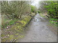 SJ6710 : Remains of Ketley station platform and trackbed by Peter Whatley