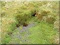NN8601 : Source of the River Devon. by Raibeart MacAoidh