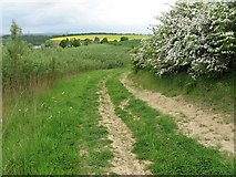 SK4995 : Bridleway approaching Firsby Hall Farm by trevor willis