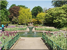 TQ2479 : Formal garden in Holland Park by David Hawgood