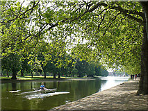 TL0549 : A sculler on the River Great Ouse by Robin Drayton