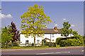 TQ2996 : Eastpole Cottages, Bramley Road, London N14 in summer by Christine Matthews
