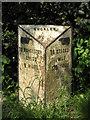 SO7350 : Milestone near The Nelson Inn, Longley Green by Peter Whatley