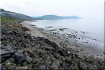 SY3492 : Landslip between Charmouth and Lyme Regis by Nigel Mykura