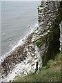 TA1774 : Buckton Cliffs by Paul Glazzard