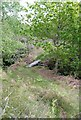 NR7577 : Footbridge above St Columba's Cave by Patrick Mackie