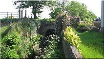 D0035 : Glassaneeran bridge by Willie Duffin