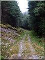 NN1551 : Forest Road, Gleann Fhaolain by Chris Eilbeck