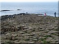 C9444 : Giant's Causeway [4] by Rossographer