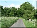 SU6448 : Rural Lane by Sandy B
