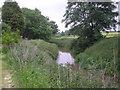 SJ6317 : River Strine at Crudgington by Row17