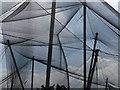 SX9163 : Roof at Living Coasts by Derek Harper