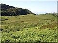NR7275 : Knapdale moorland by Patrick Mackie