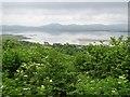 G6233 : Culleenduff Townland by Kenneth  Allen