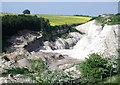 SE9533 : Riplingham Quarry by Paul Glazzard
