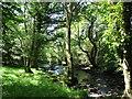 SH5059 : Afon Gwyrfai below the Gwredog-Isaf bridge by Eric Jones