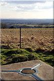 SU6022 : Beacon Hill by Pierre Terre