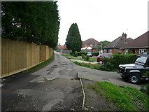SU9946 : Mill Lane by Jonathan Billinger