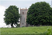 SK8259 : Church Tower between the trees by roger geach