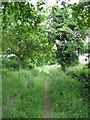 SO8043 : Path to Blackmore Park Farm by Peter Whatley