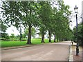 TQ2777 : Battersea Park: The Parade by Nigel Cox