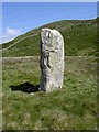 SH7171 : Standing stone by Ian Greig