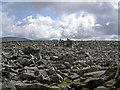 SH6968 : The rocky summit of Foel-fras by Ian Greig