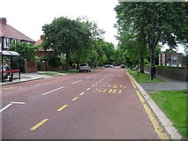 NZ3955 : Queen Alexandra Road by Roger Smith