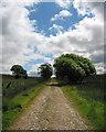 SO3898 : Farm track by Dave Croker