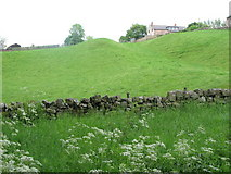 NY6366 : The north defensive ditch of Hadrian's Wall east of Poltross Burn by Mike Quinn