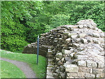 NY6366 : Hadrian's Wall at Milecastle 48 (Poltross Burn) by Mike Quinn