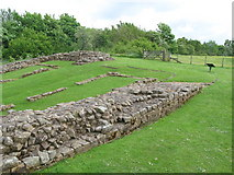 NY6366 : Milecastle 48 (Poltross Burn) by Mike Quinn