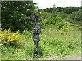 NS9467 : NCN Signpost,  Armadale by Richard Webb