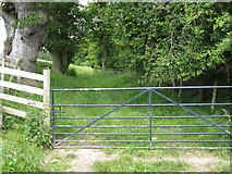SO3566 : Into Birchen Coppice by Peter Whatley