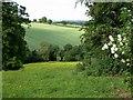 SO7978 : Farmland near Trimpley, Worcestershire by Mat Fascione