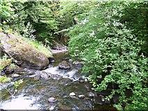 NN9328 : The River Almond by Maigheach-gheal