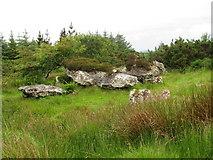 G7677 : Cashel Town wedge tombs by C Michael Hogan
