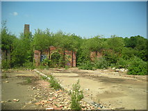 TQ1038 : Remains of Ewhurst Brickworks by Dan Gregory