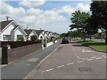 SZ0995 : Muscliff: bungalows in Castle Lane by Chris Downer