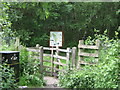 NY3857 : Kingmoor Sidings Nature Reserve by Andy Connor