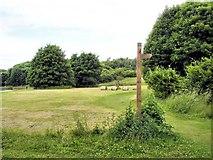 SJ6575 : Meadow in Anderton Nature Park by Mike Harris
