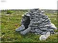 M2401 : Beehive Burren hut in drystone dyked field by C Michael Hogan