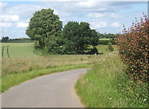 TM2754 : Lane corner and countryside near Dallinghoo by Andrew Hill