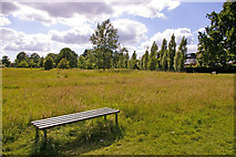TQ3095 : Uncut grass with bench, Oakwood Park. London N14 by Christine Matthews